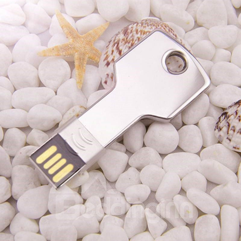 Amazing Mini LENK Hot Sale Key Shape 4G Or 8G USB Flash Disk