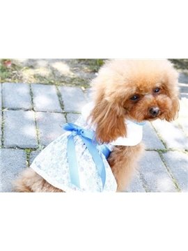 New Arrival Gorgeous Princess Flower Dress Style Fashion Dog Clothing