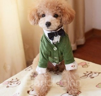 New Arrival Gentleman Shirts Style Fashion Colorful Dog Clothing