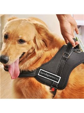 New Arrival High Quality Nilon Soft Black Dog's Harnesses