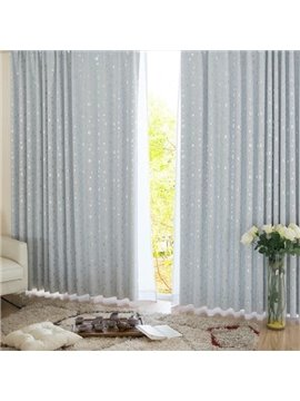 Best Selling Slivery Window Shade One piece Curtain with Beautiful Pattern