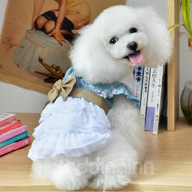 Cheap New Arrival Blue Princess Skirt Poodle Clothing
