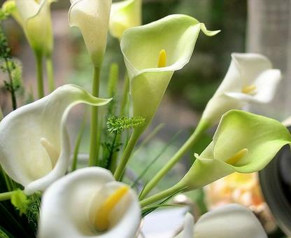 New Arrival A Bunch of 10 Pieces Lovely PU Calla Flowers