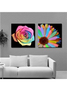 Modern Style Colorful Flowers Print 2-piece Cross Film Wall Art Prints