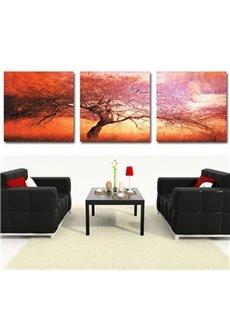 New Arrival Beautiful Big Tree Print 3-piece Cross Film Wall Art Prints