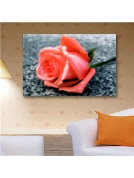 New Arrival Beautiful Pink Rose Print Cross Film Wall Art Prints
