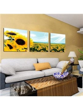 New Arrival Lovely Sunflowers Blossoms Print 3-piece Cross Film Wall Art Prints