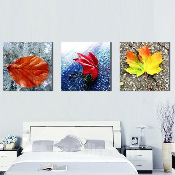 New Arrival Beautiful Colorful Fallen Leaves Print 3-piece Cross Film Wall Art Prints