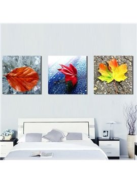 New Arrival Beautiful Colorful Fallen Leaves Print 3-piece Cross Film Wall Art Prints