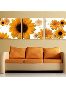 New Arrival Lovely Yellow Daisy Flowers Print 3-piece Cross Film Wall Art Prints
