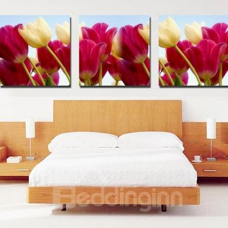 New Arrival Beautiful Colorful Tulips Print 3-piece Cross Film Wall Art Prints