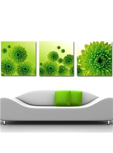 New Arrival Lovely Green Chrysanthemum Flowers Print 3-piece Cross Film Wall Art Prints