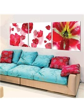 New Arrival Stunning Red Flowers and Stamen Print 3-piece Cross Film Wall Art Prints