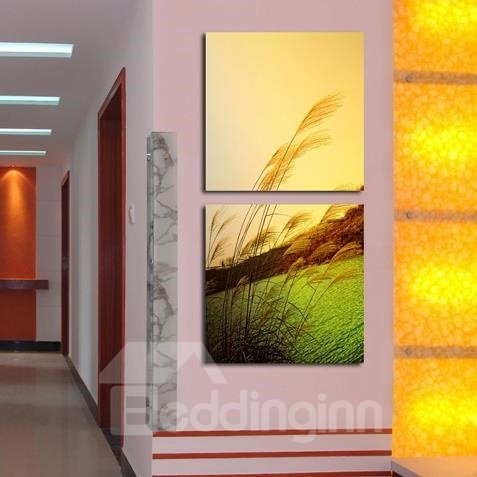 New Arrival Lovely Reed Marshes Print 2-piece White Cross Film Wall Art Prints