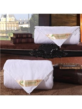 High Quality Comfortable and Skincare Silk Quilt(1.5kg)