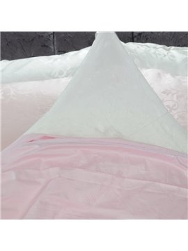 High Quality Comfortable and Skincare Pink Silk Quilt(1kg)