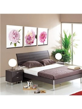 New Arrival Gerbera Blossom Film Wall Art Prints