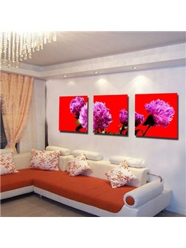 Delicate Beautiful Carnation Canvas 3-panel None Framed Wall Art Prints