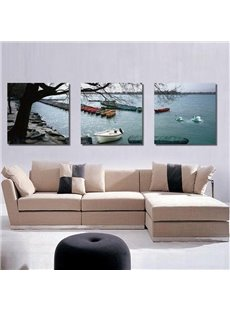New Arrival Boat and Swan on Lake Canvas Wall Prints