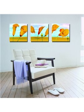 New Arrival Calla Lily and Blue Sky Canvas Wall Prints