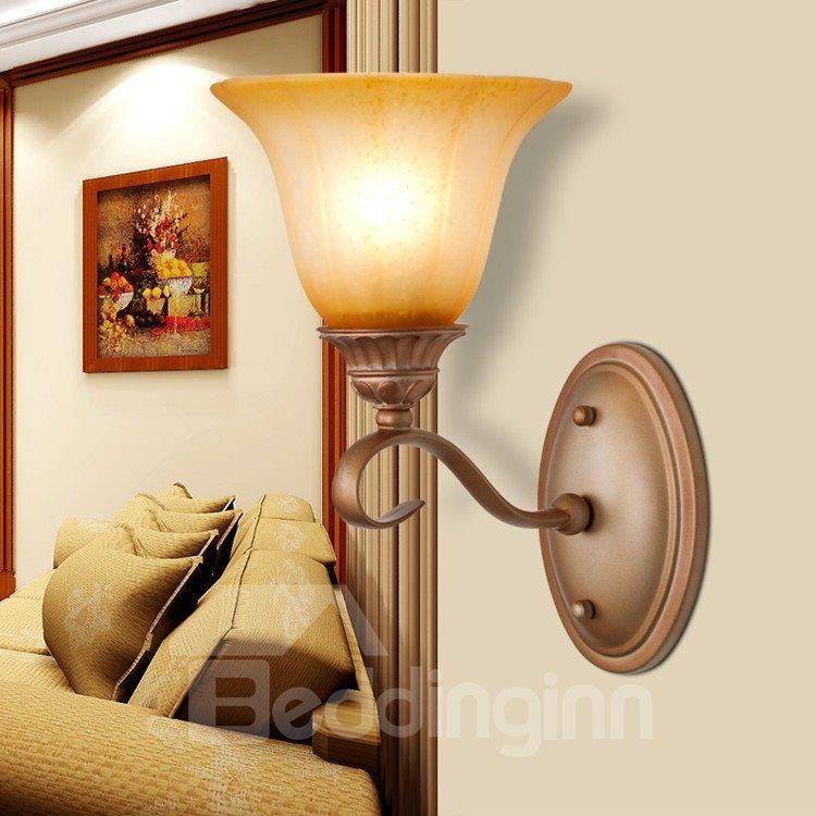 European Bronze Iron Marerial Glass Shade Wall Light