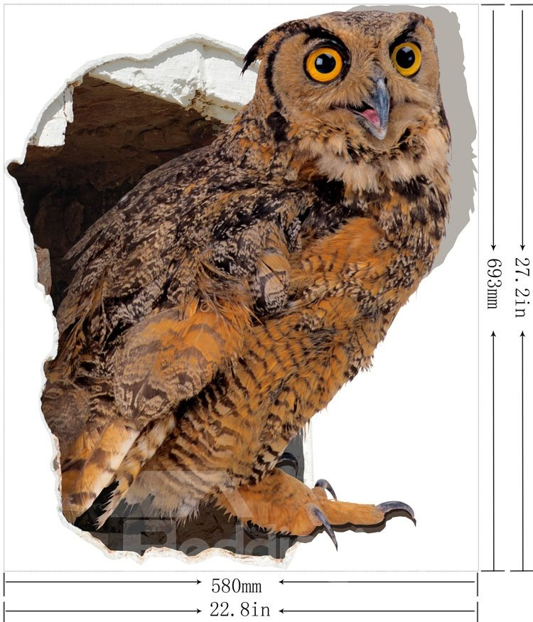 Amazing Creative Owl Pattern 3D Wall Sticker