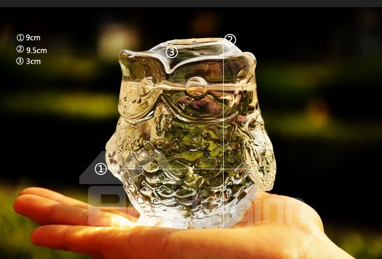 New Arrival Stunning Stylish Owl Glass Vase Ornament