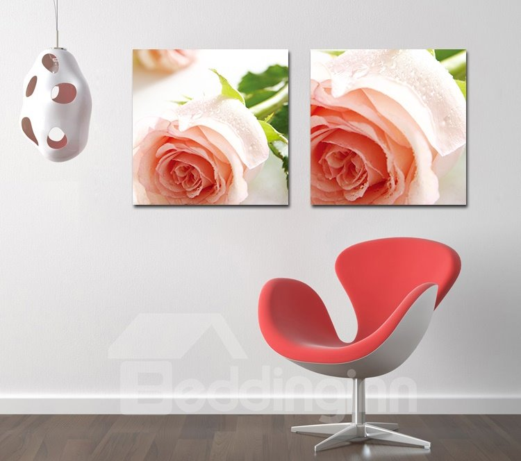 Pretty Romantic Pink Roses Film Art Wall Prints