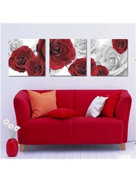Very Pretty White and Red Roses Film Art Wall Prints