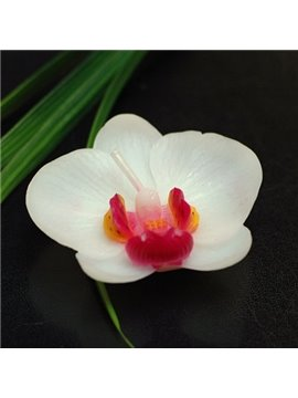 New Arrival Noble and Elegant Moth Orchid Candle