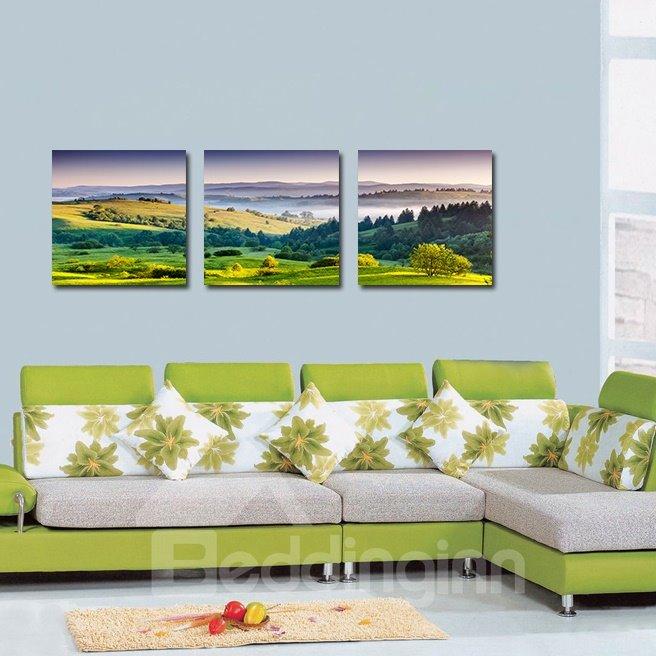 Wonderful Pretty  Hillside 3-Pieces of Crystal Film Art Wall Print