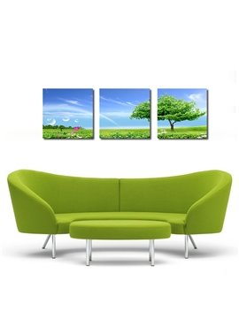 Blue Sky and Tree 3-Pieces of Crystal Film Art Wall Print
