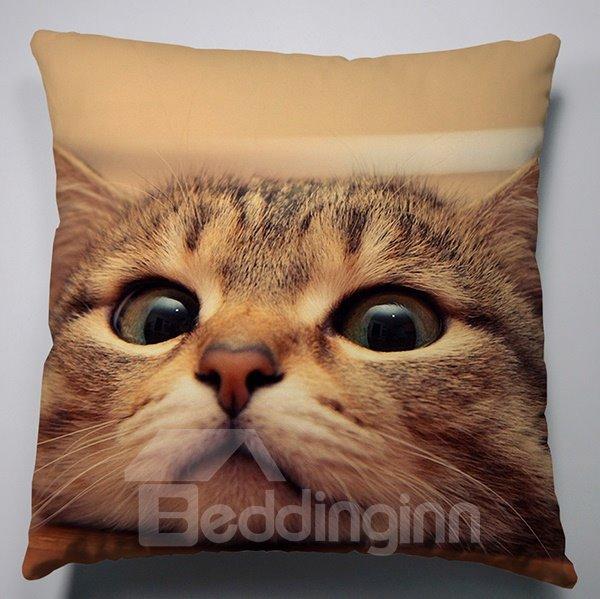 Creative Shocked Impression Cat Pattern Super Soft Throw Pillow