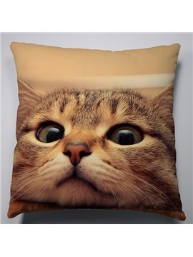 Creative Shocked Impression Cat Pattern Super Soft Throw Pillow