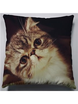 Deep in Thought Little Cat Pattern Soft Throw Pillow
