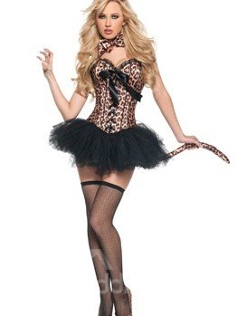 High Class Sexy Wild Cat Costume