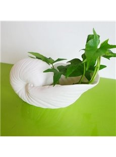 Wonderful 1-Piece Ceramic Conch Vase for Home Decoration