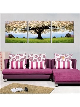 Wonderful Pear Blossom 3-Piece Crystal Film Art Wall Print