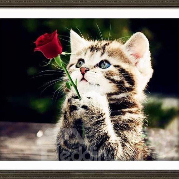 Wonderful Cute Kitten 1-Piece DIY Diamond Sticker