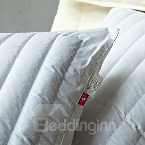 Popular Healthcare One Piece Cotton Pillow