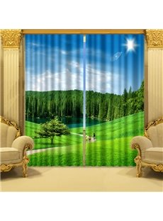 Fresh Nature Scenery Green Grasslands Printing 3D Curtain