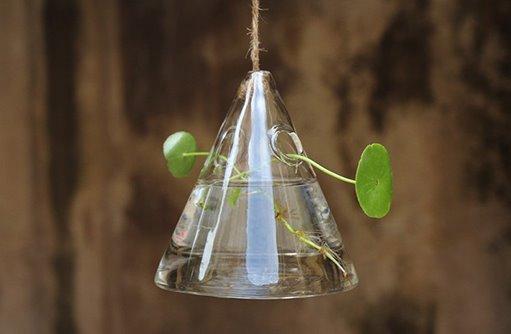 Fashion Hydroponics Small Hanging Glass Bottle Set