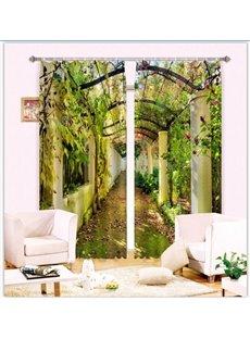 Beautiful Corridor with Sunlight Through the Vine 3D Curtain