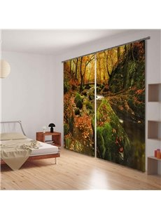 Beautiful Forest in the Fall Printing 3D Functional Curtain