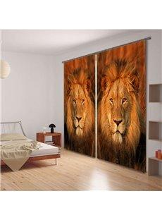 Vivid Lion King Face 3D Printing 2-Panels Curtain