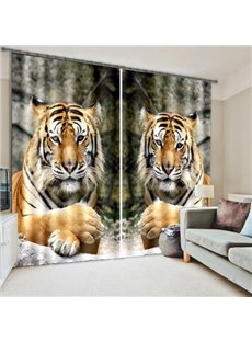 Adorable Tigers Lying on the Stone Printing 3D Curtain