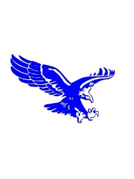 Eagle Spreading Wings And Flying Pattern Car Sticker