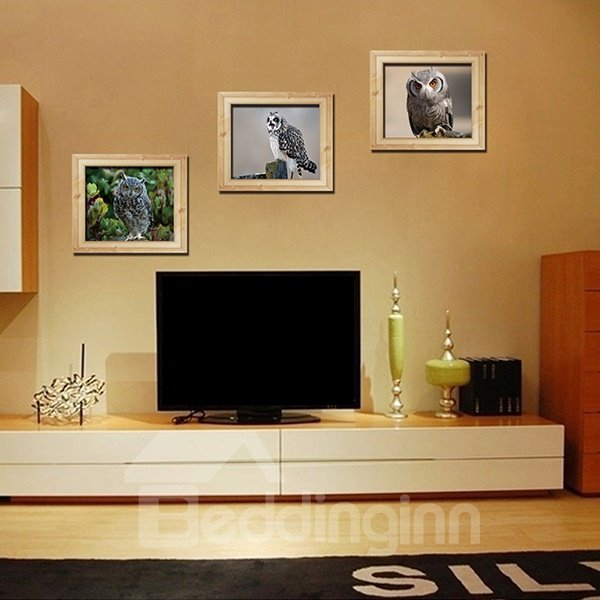 Natural Wise Owl 3-Panel Photo Frame Style Removable Wall Sticker