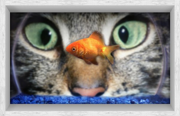 Close-Up of Cat Watching Fish in a Bowl Slipping-Preventing Water-Proof Bathroom 3D Floor Sticker