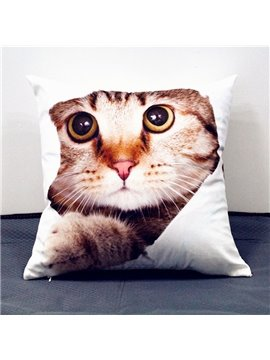 Vivid Lovely 3D Cat Print Plush Throw Pillow